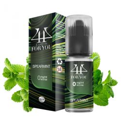 E-liquide SPEARMINT - 4YOU